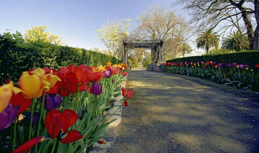 Horsham Botanic Gardens